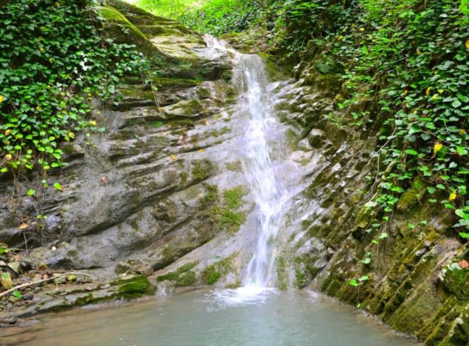 Национальный парк «Берендеево царство»