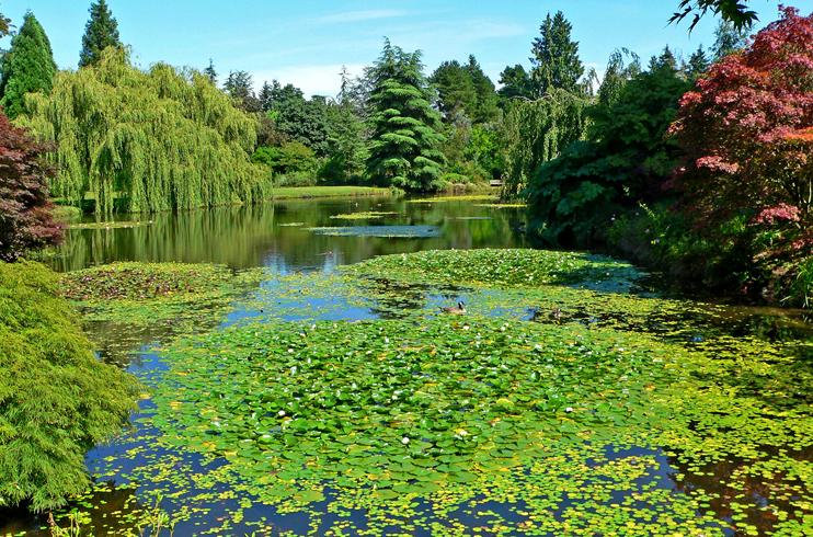 Ботанический сад Ван Дусена