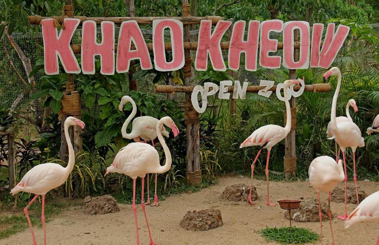 Зоопарк «Као Кео»