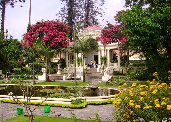 Сад Снов