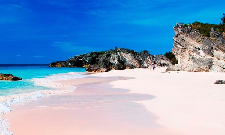 Розовый пляж на Харбор-Айленд