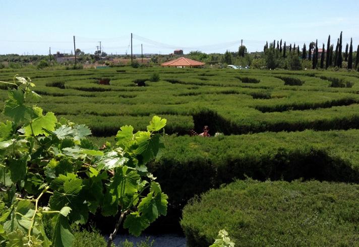 Парк лекарственных и пряных трав