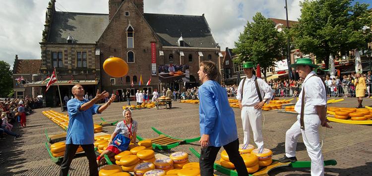 Сыр на улицах