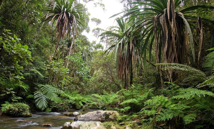 Национальный парк Захамена