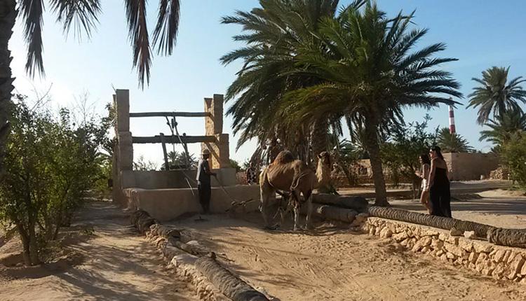 Традиционные деревни Джербы