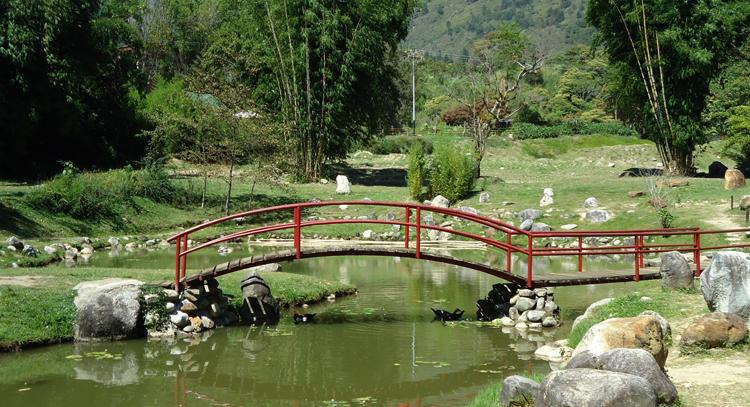 Ботанический сад Мериды