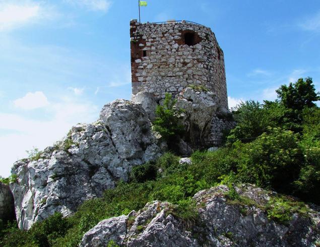 Козья башня