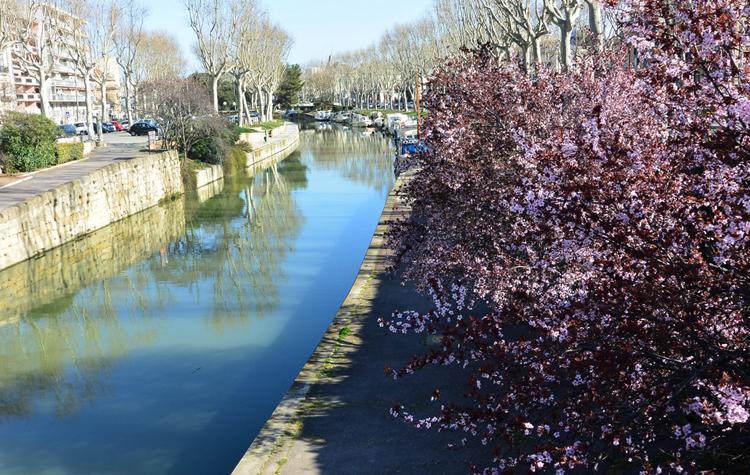 Набережная канала Робин