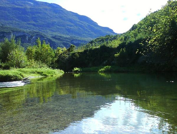 Река Сарка