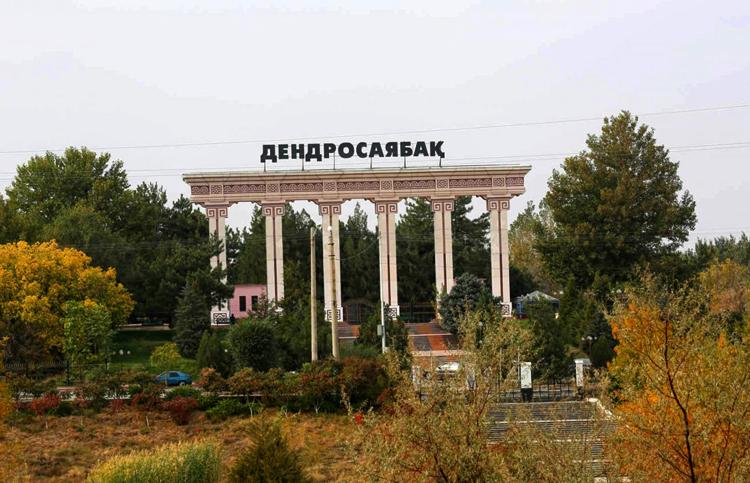 Шымкентский дендропарк