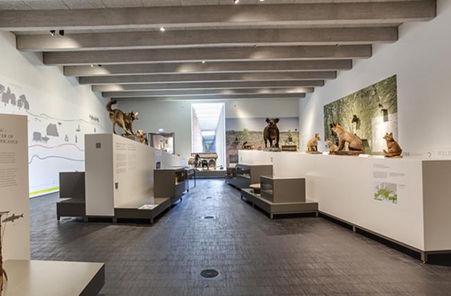 Внутри музея княжества