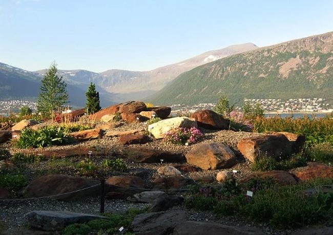 Ботанический сад Альпина-Арктика