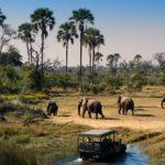 Главные достопримечательности Ботсваны: обзор и фото