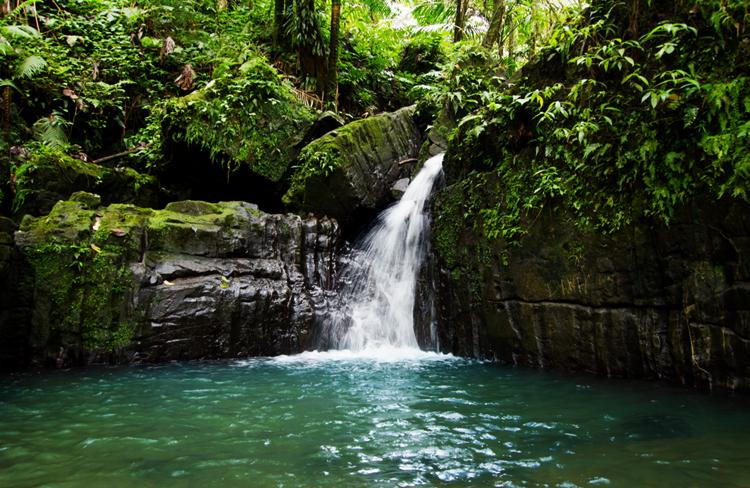 Национальный парк Эль-Юнке