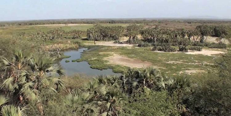 Национальный парк Аваш