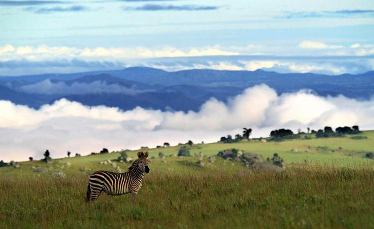 Национальный парк Ньика