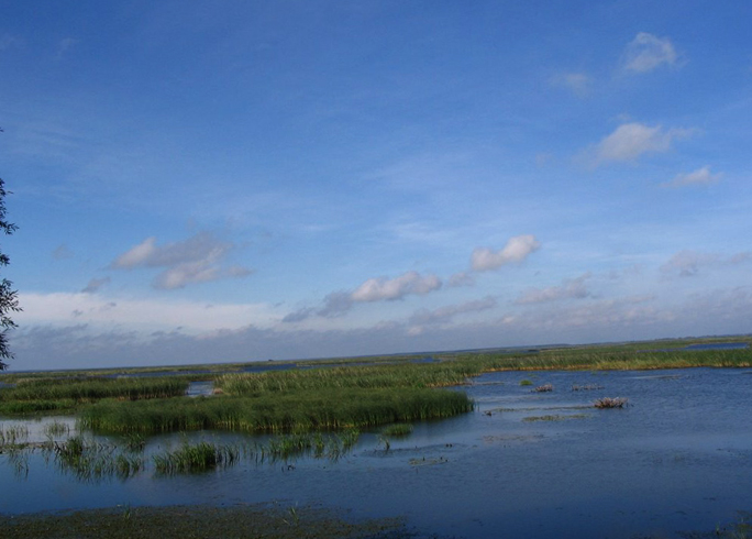 Лубанское озеро