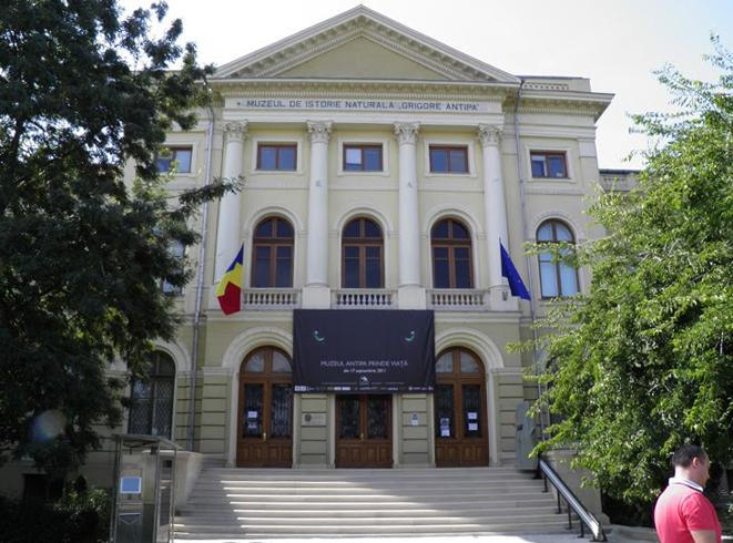 Музей естественной истории Григоре Антипа