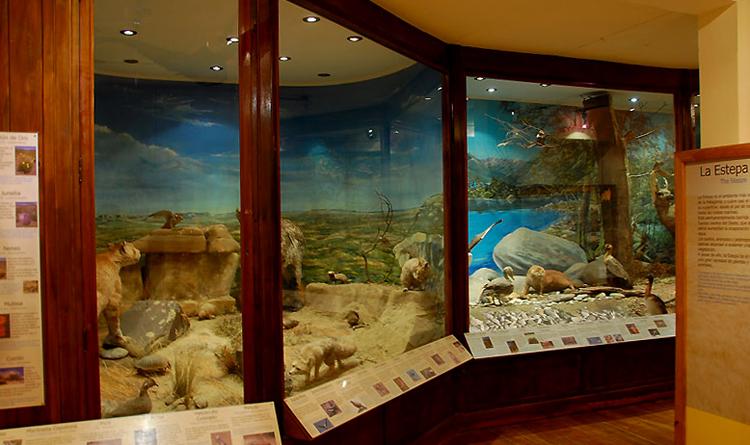Музей «Патагония» имени Франциско Морено