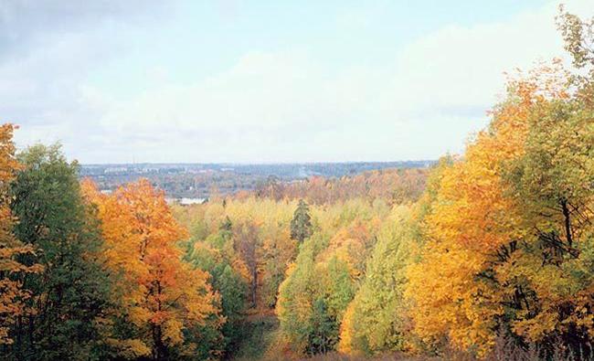 Ореховая гора