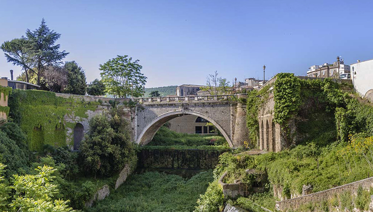 Панорамный мост