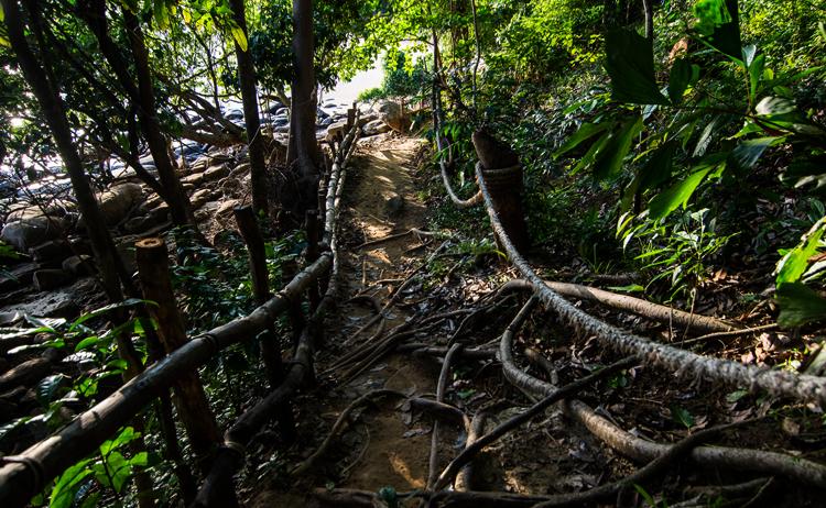 Природа архипелага Пхи-Пхи