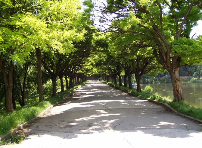 Парк Valea Trandafirilor