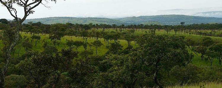 Национальный парк Рувубу