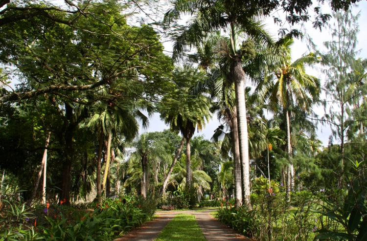Ботанические сады Турстон Гарден