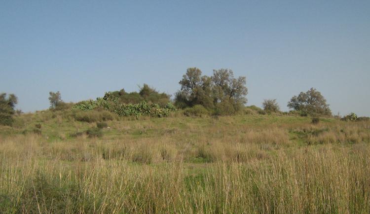 Тель-Ашдод