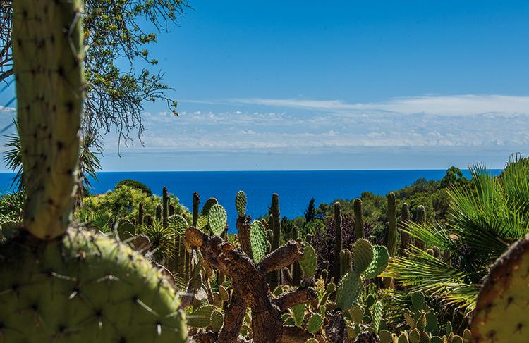 Ботанический тропический сад Пинья де Роса