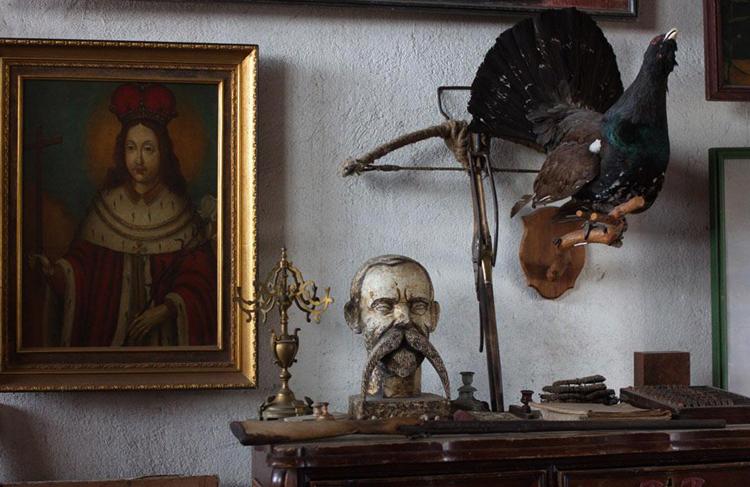 Внутри музея Феликса Янушкевича