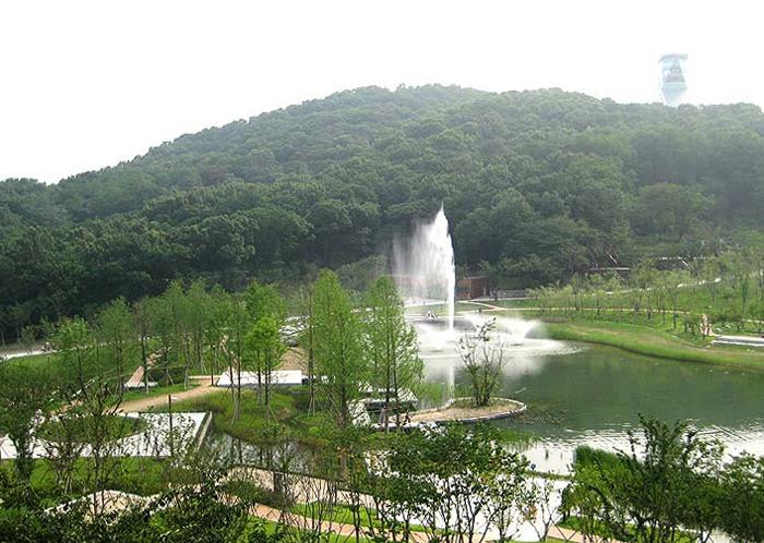 Парк «Лес мечты»