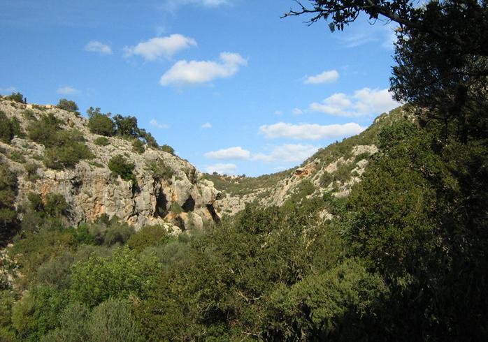 Национальный парк Куф