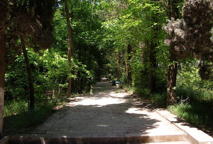 Бакинский центральный Ботанический сад