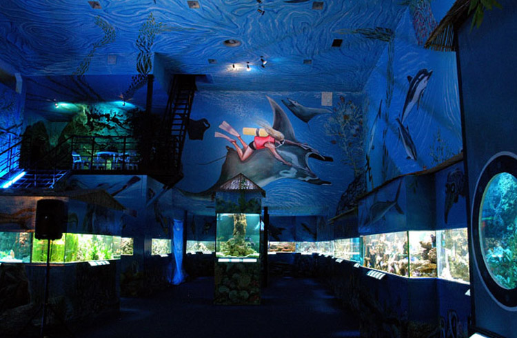 Аквариум SeaWorld