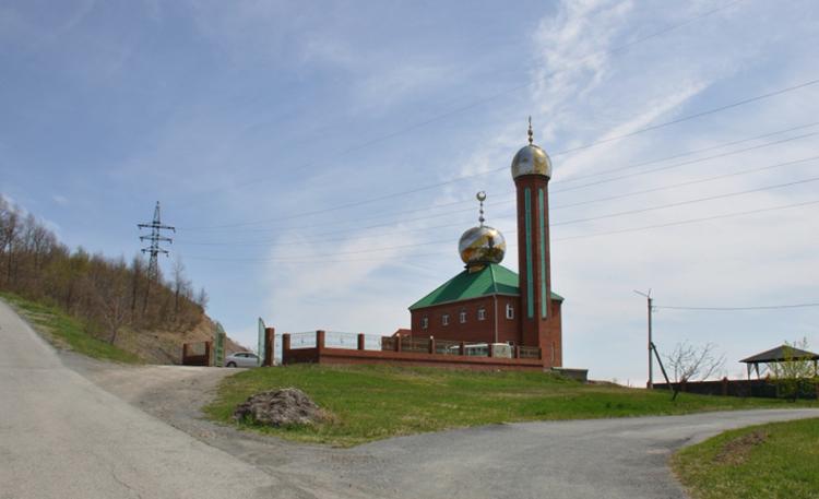Мечеть у сопки Лебединой