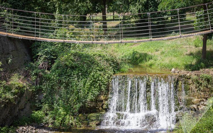 Сад в Тбилиси