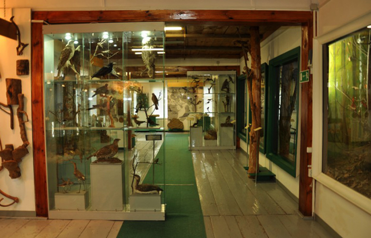 Желанновский краеведческий музей