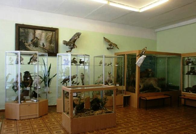 Музей природы имени С.И.Трофимова
