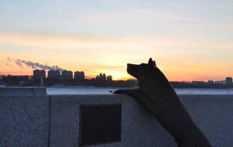 Памятник собаке Дружок