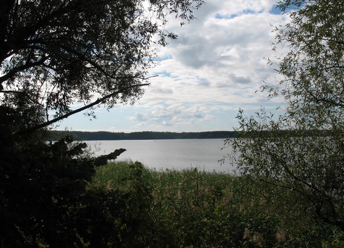 Печенежское поле