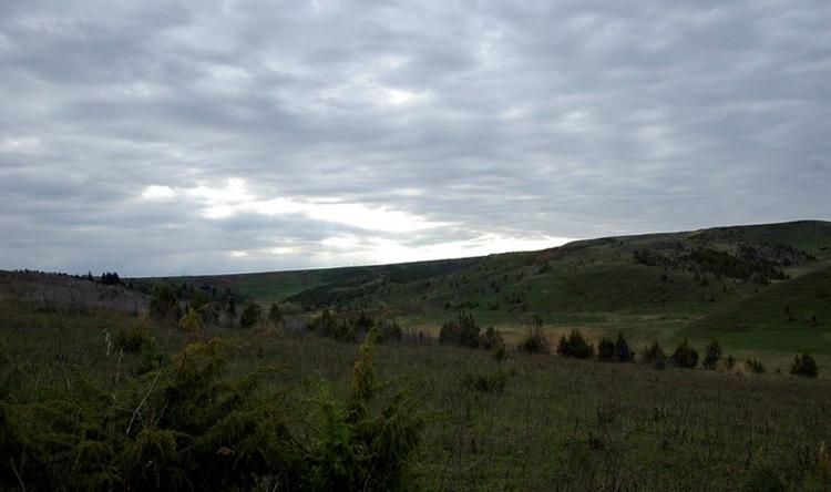 Можжевеловые холмы в Сарапуле