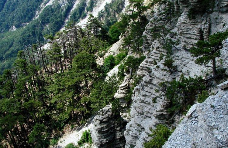 Горно-лесной заповедник