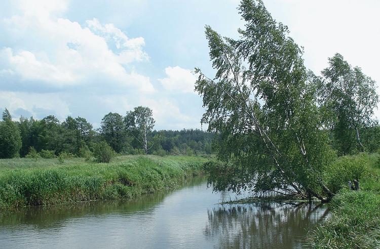 Река Гуслица