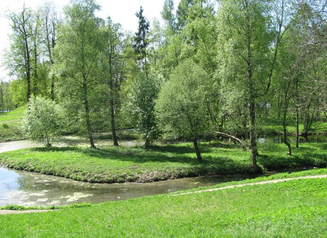 Водный лабиринт