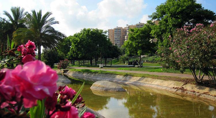 Сады реки Турия