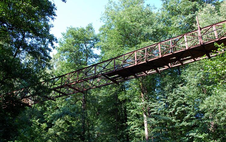 Подвесной мост через р. Репинка