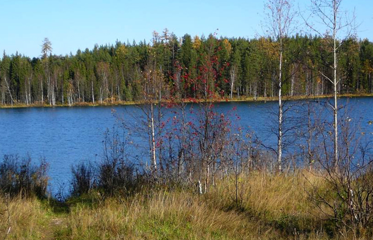 Озеро Большое Параськино