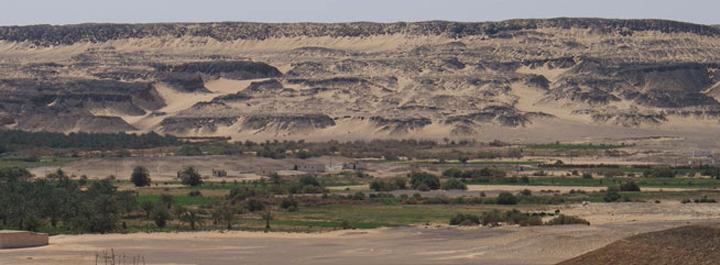 Бахария